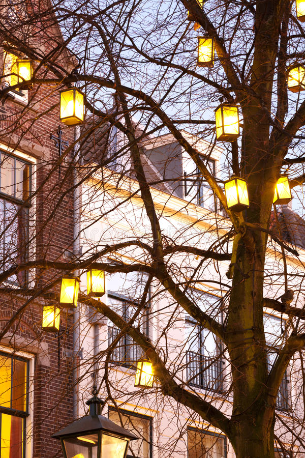 Download Light lanterns on a tree stock image. Image of buildings - 27750535