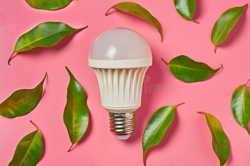 Light led bulb and scattered fresh green leaves on pink background. Concept of saving and alternative energy stock photo