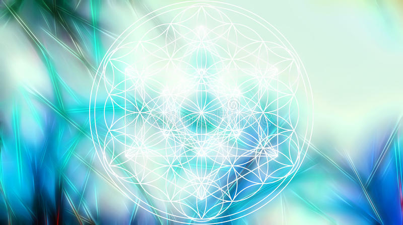 Light merkaba and Flower of life on abstract color background and fractal structure. Sacred geometry. vector illustration