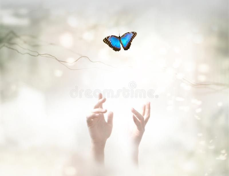 Into the Light - metaphorical ethereal background. Soul Release and freedom concept royalty free stock photos