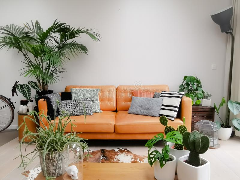 Light Modern Living Room With Brown Leather Couch, Cowhide ...