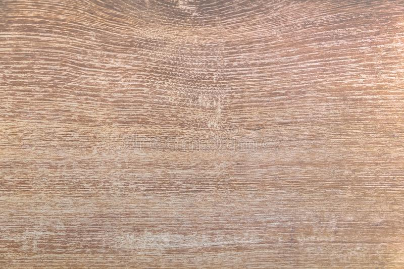Light Oak wood brown grain texture background. Nature grunge pat royalty free stock images