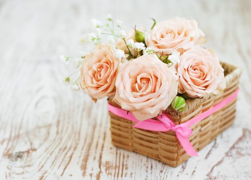 Light Pink roses. Pink roses on old white wooden background royalty free stock photo