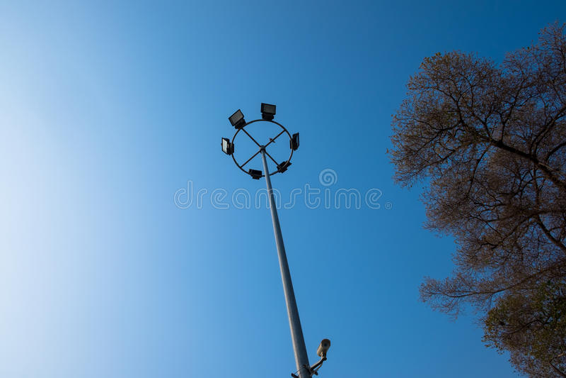 Light pole with big tree. On blue sky stock image