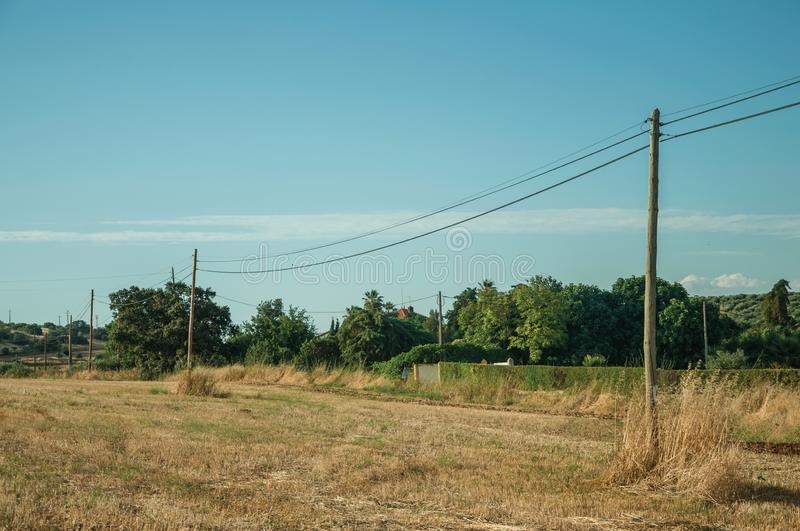 Light poles over field covered by straw stock image