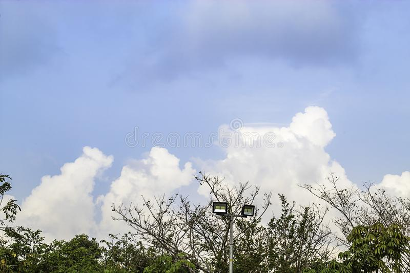 Light poles and trees background sky with cloud.  royalty free stock photo