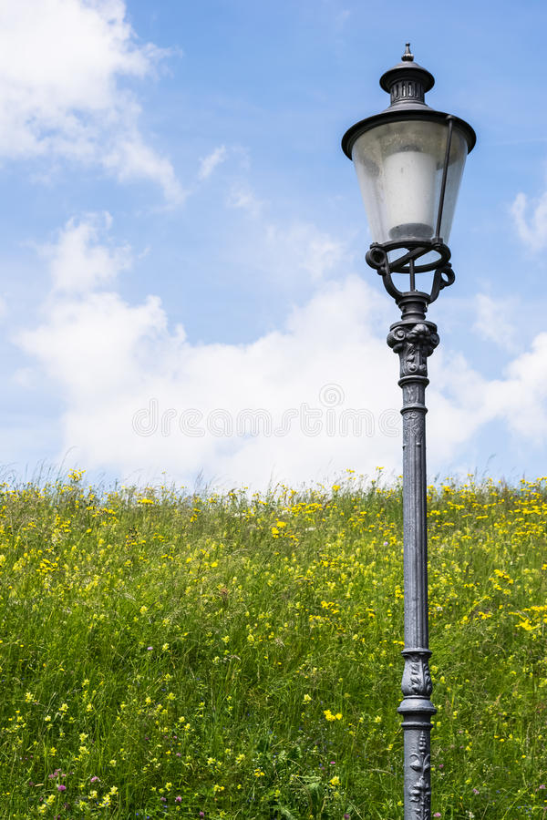 Light post on a field near Winterthur Switzerland. Light post on a flowers field in a sunny day near Winterthur Switzerland stock images