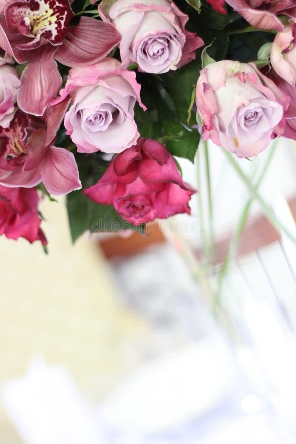 Light purple-pink rose decor royalty free stock photography