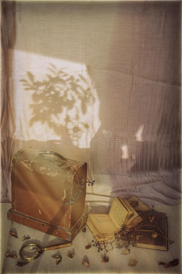 Light and shadow, autumn day. Old books, wooden chest, dried grape brushes, magnifier. Vintage style. Concept of. Nostalgia, sadness, autumn romance stock photos