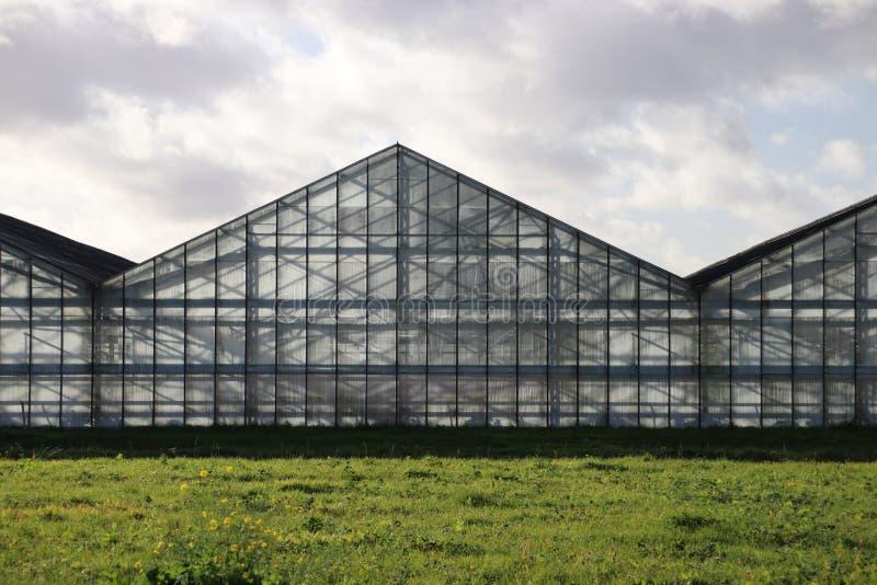 Light and shadow lines in an old greenhouse in the Eendragtspolder in Zevenhuizen, the Netherlands. stock image