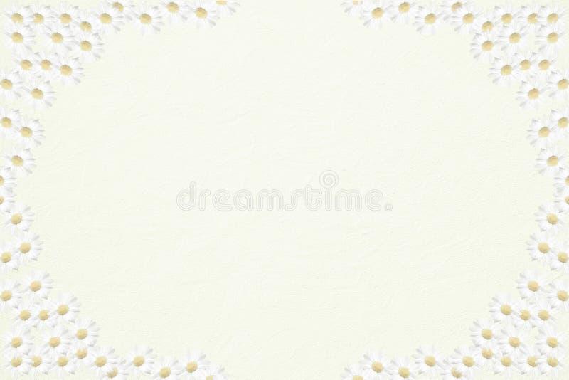 Light structured background with half transparent marguerite fr. Ame, background design vector illustration