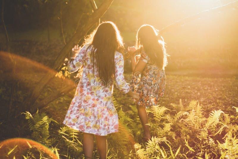 Light, Sunlight, Emotion, Friendship royalty free stock photo