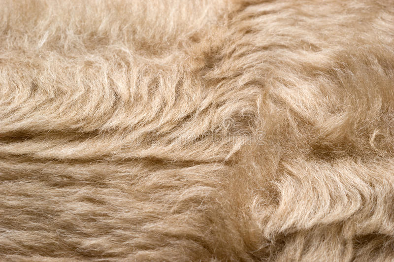 Download Light synthetic fabric stock photo. Image of background - 17248396
