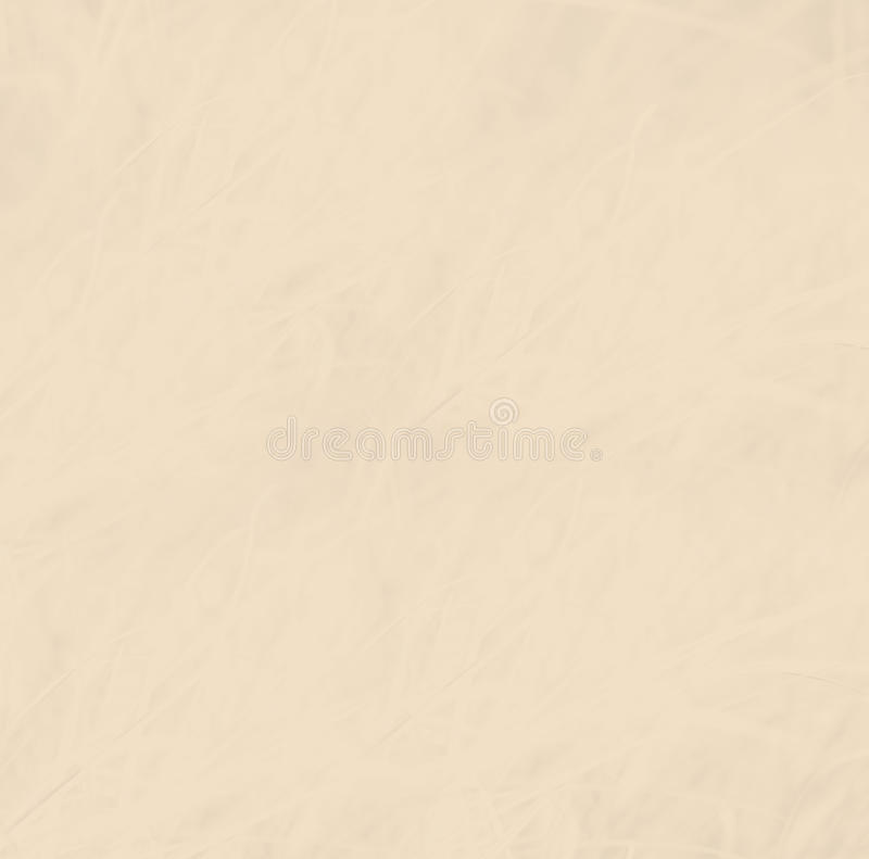 Free Light Tan Abstract Background Royalty Free Stock Photos - 46865368