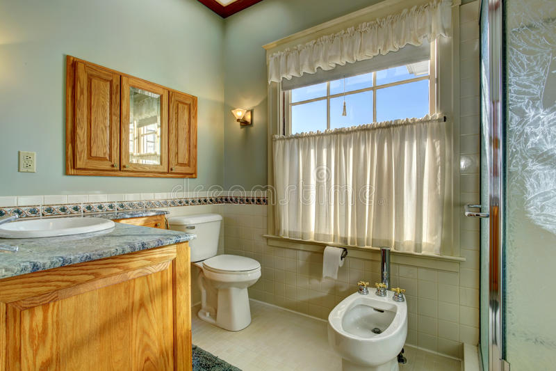 Light tone bathroom with bidet royalty free stock photo