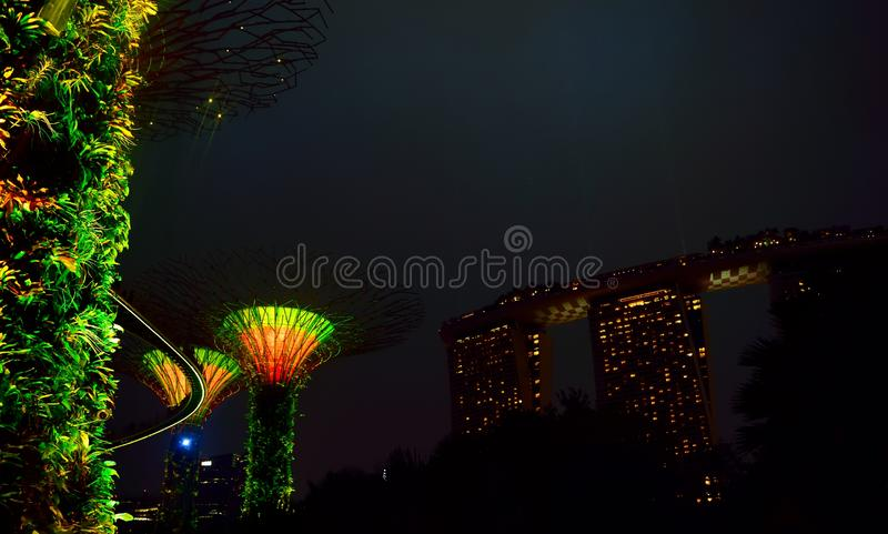 Light up the night with trees royalty free stock image
