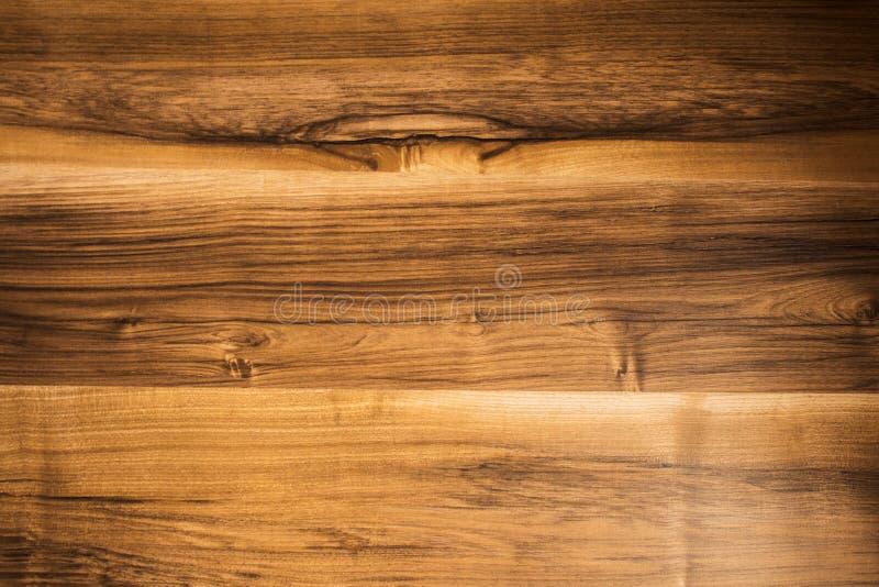 Light walnut tree background texture royalty free stock photography