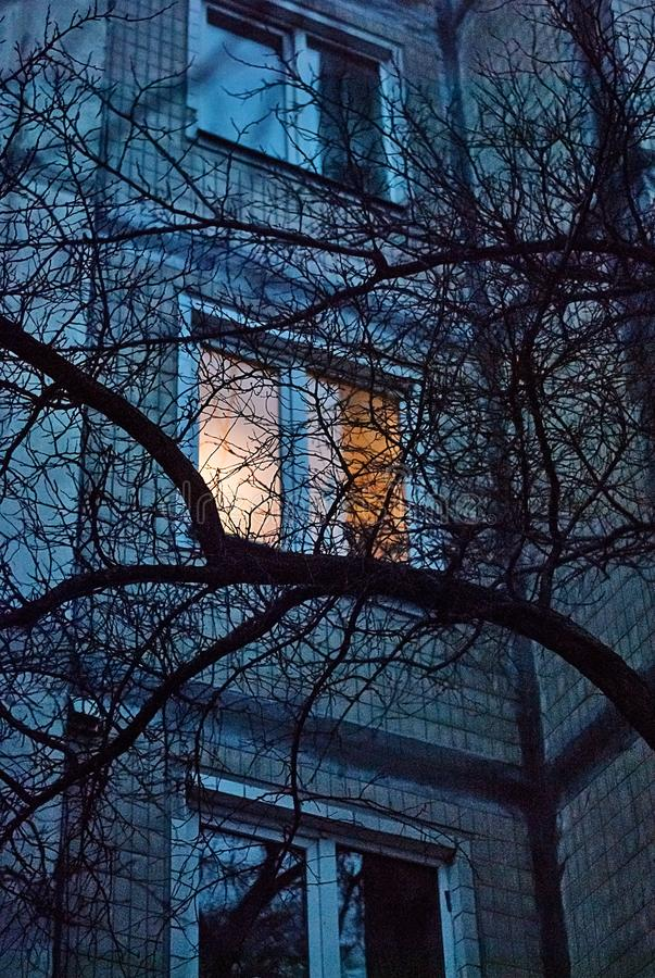 Light in the window of an apartment building in the evening. And tree branches without leaves royalty free stock photos