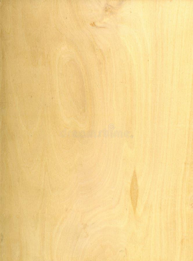 Light Wood Pine Texture. Highly detailed Light Wood Pine Texture