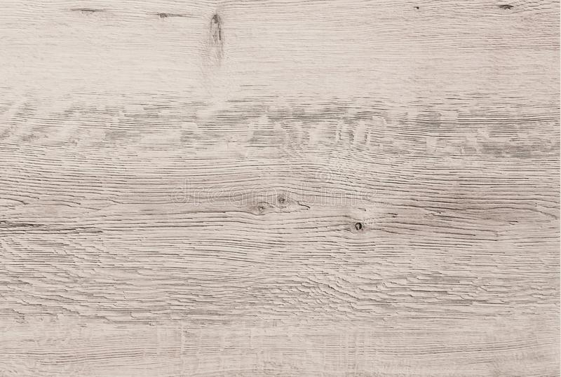 Light wood texture background, white wood planks. Old grunge washed wood, painted wooden table pattern top view. royalty free stock photo