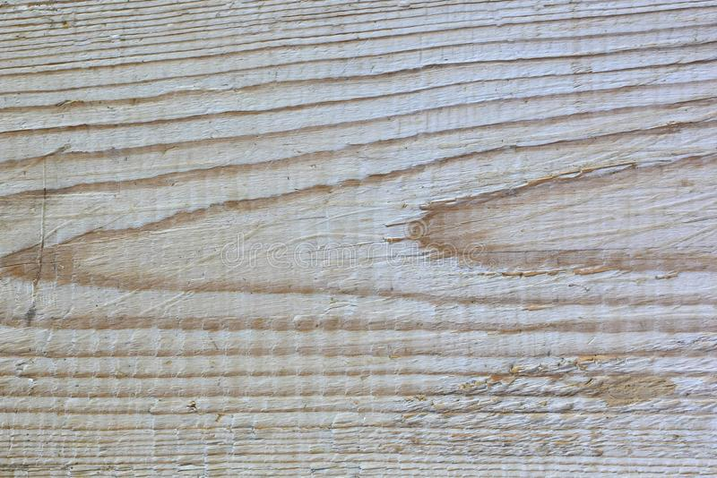 Light wood texture pine. Abstract wood texture background royalty free stock photos