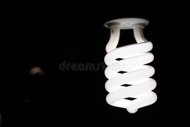 Φωτογραφία κινηματογραφήσεων σε πρώτο πλάνο σπειροειδούς Lightbulb στοκ εικόνα