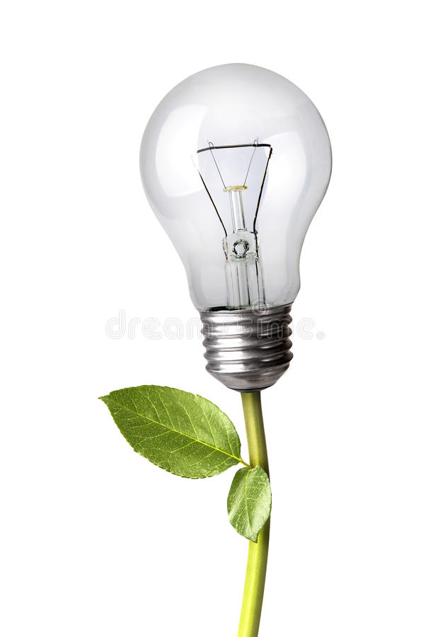 Download Lightbulb as A Plant stock photo. Image of energy, pollution - 26132878