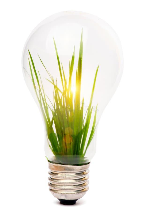 Lightbulb met installatie royalty-vrije stock afbeeldingen