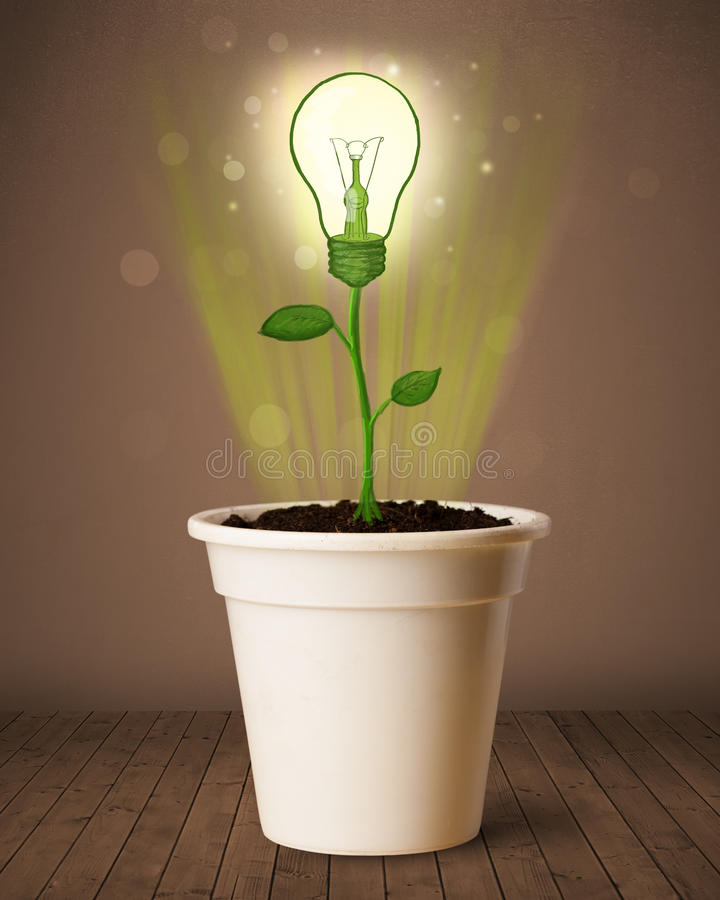 Lightbulb plant coming out of flowerpot. Glowing lightbulb plant coming out of flowerpot stock photography
