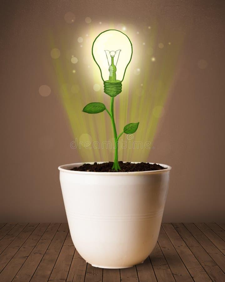 Lightbulb rośliny przybycie z flowerpot zdjęcie stock