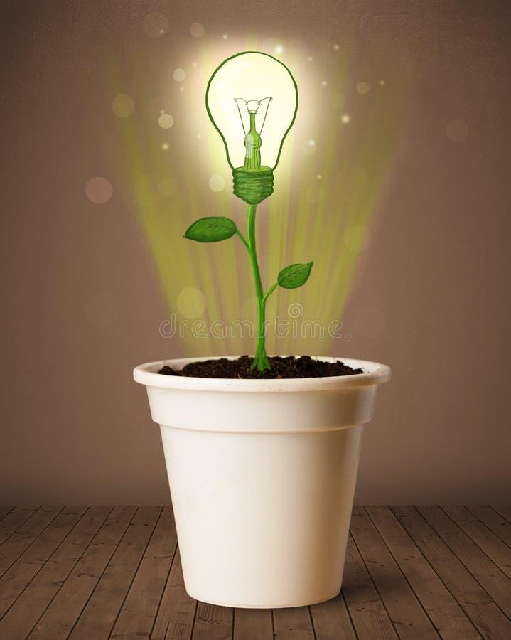 Lightbulb rośliny przybycie z flowerpot fotografia stock