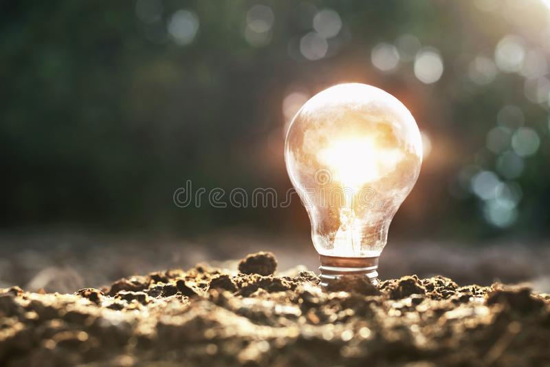 Lightbulb on soil and sunshine. concept saving energy solar power. In nature stock photography