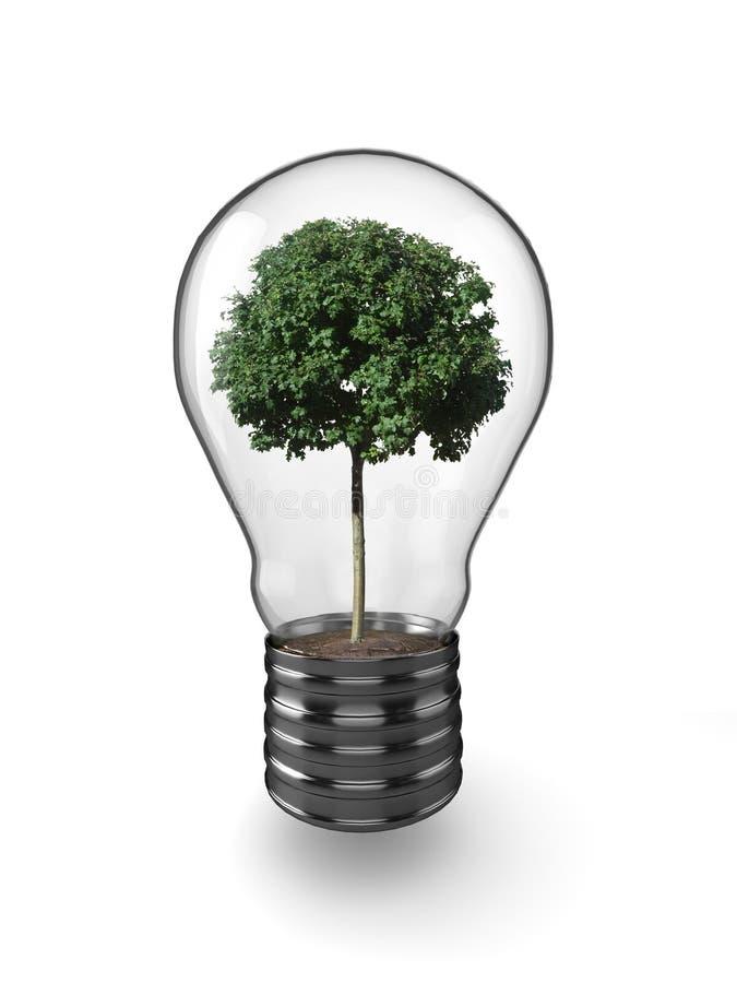 Download Lightbulb tree stock illustration. Image of earth, environment - 11064942