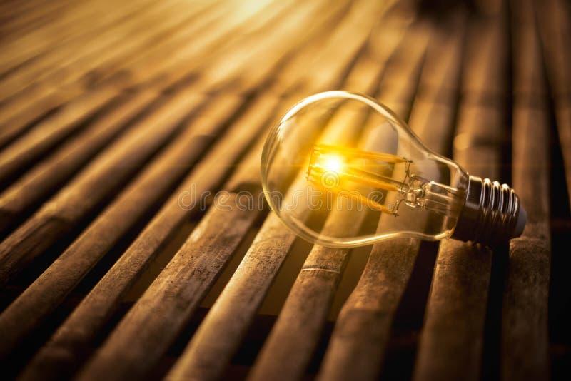 Lightbulb voor sparen energieconcept Elektriciteit bij nacht stock fotografie