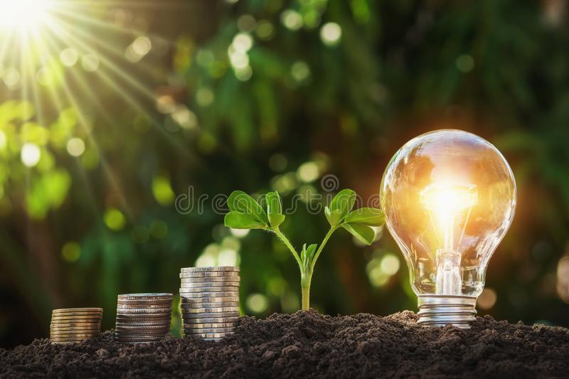 lightbulb with young plant and money stack on soil. concept saving energy stock photography