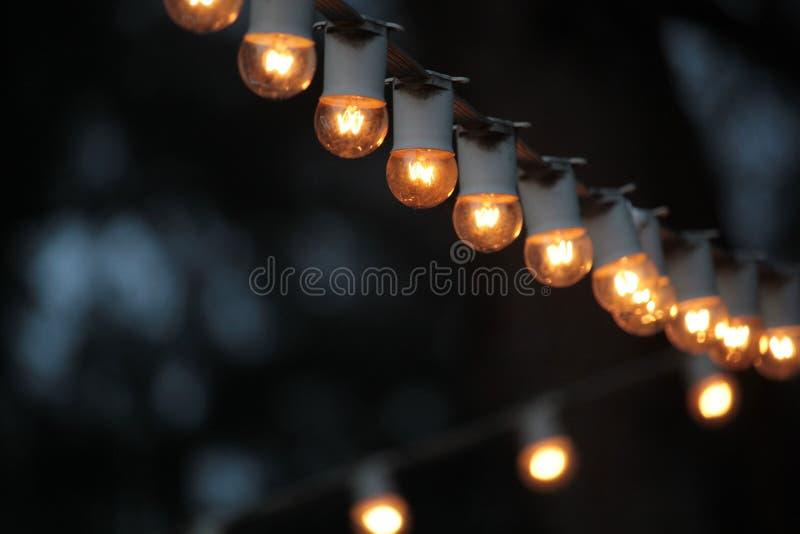 Lightbulbs arkivbilder
