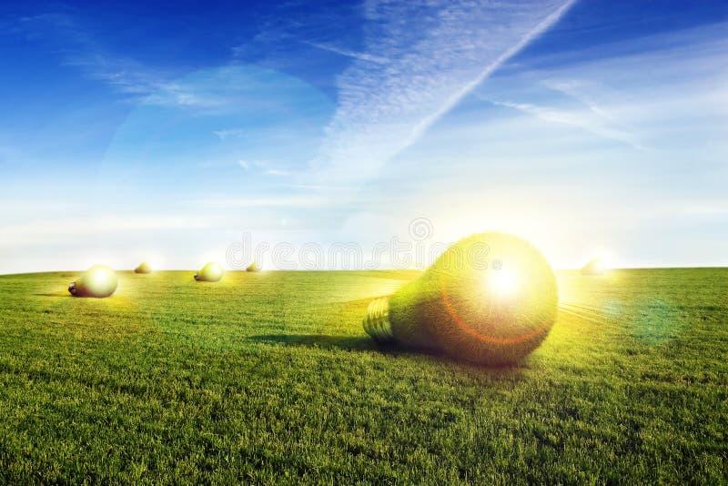 Lightbulbs. Made of green grass lying on green field royalty free stock photos