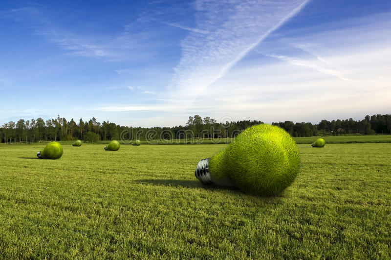 Lightbulbs on a field. Lightbulb made of green grass lying on green field royalty free stock images