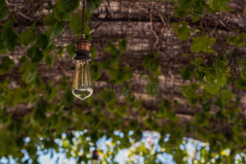 Lighted bulb on a thatched roof in cafe royalty free stock image