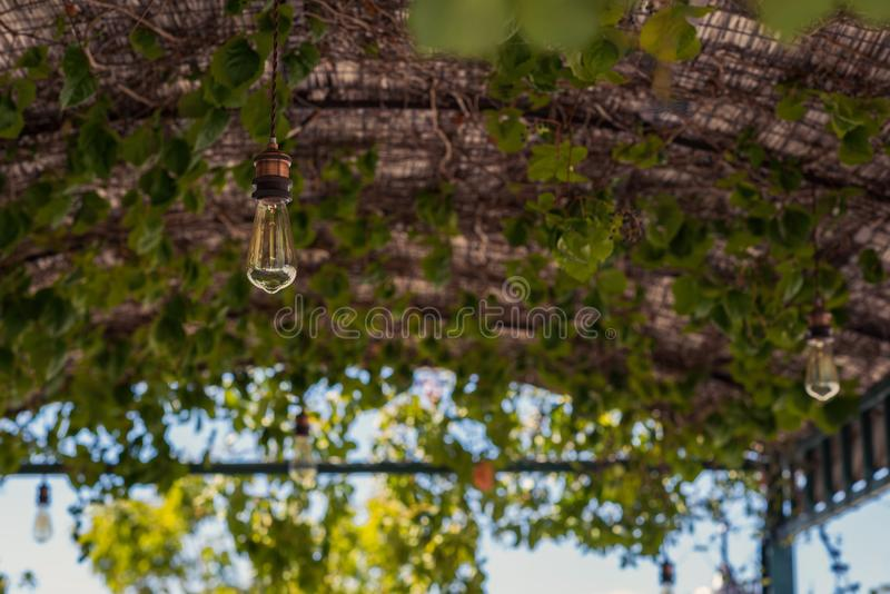 Lighted bulb on a thatched roof in cafe royalty free stock photography