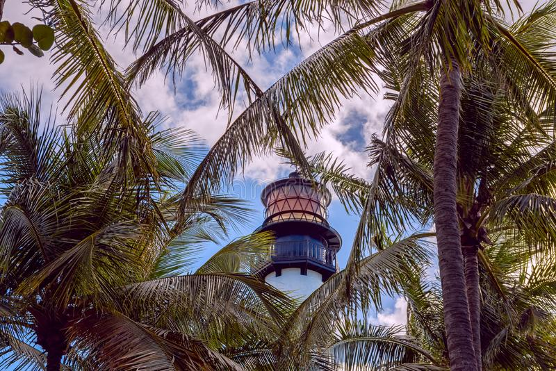 A lighthouse and branches of tropical trees against a bright blue sky. royalty free stock photography