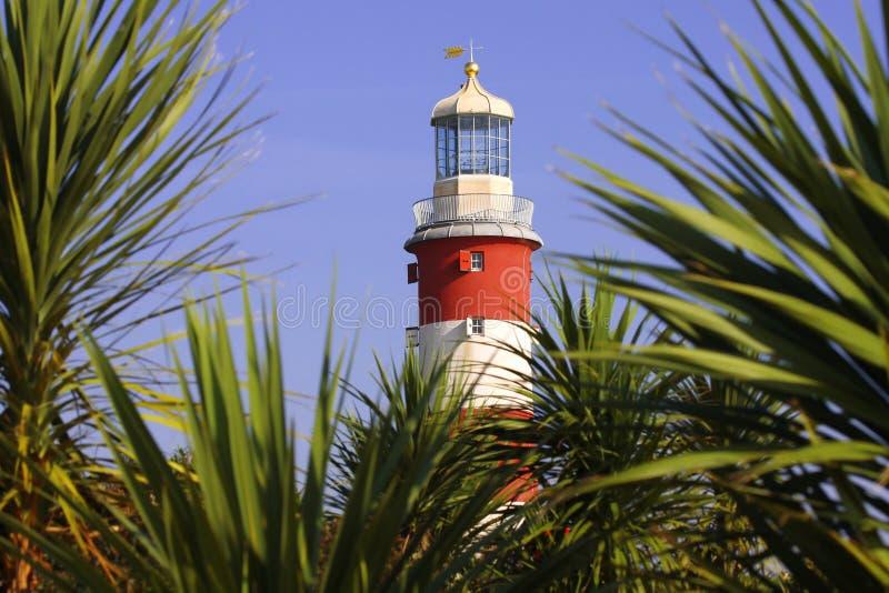 Lighthouse with palms stock photos