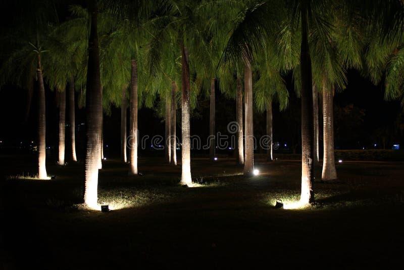 public park bj at night