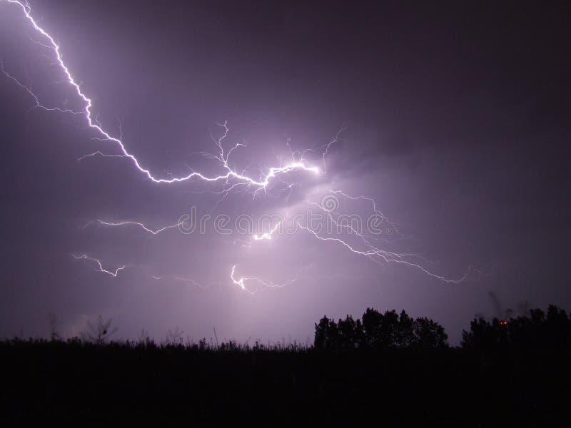 Lightning Crashed Under Trees During Night Time Free Public Domain Cc0 Image