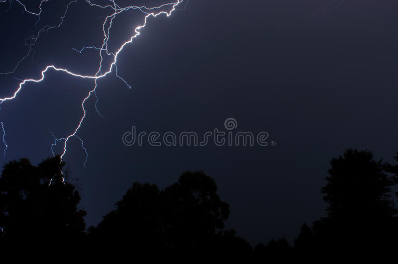 Download Lightning over the trees stock image. Image of cold, foreground - 18135783