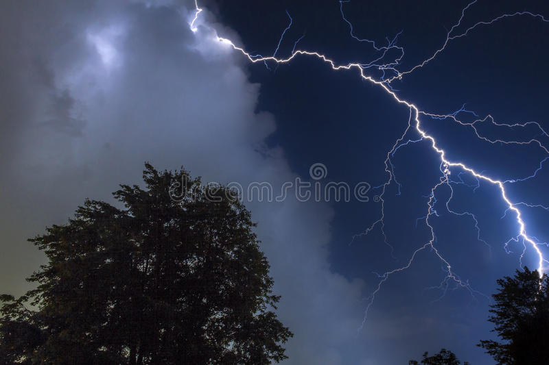 Lightning over the trees royalty free stock photo