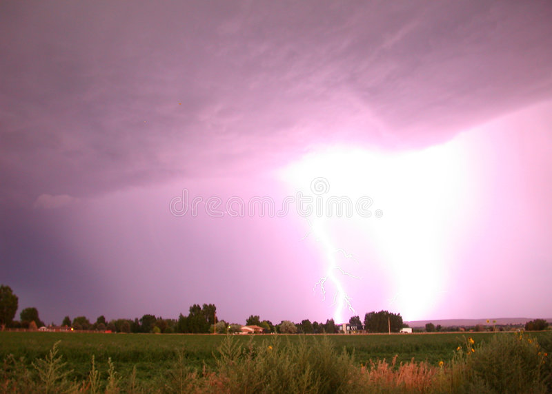 Lightning Storm. A terrific blast of lightning barrels forth over alfalfa farm land in this energizing July storm. Purple looking sky and ominous storm clouds in stock photos