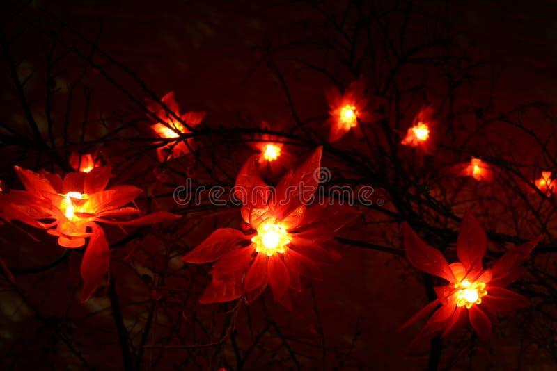 Download Lights stock image. Image of deko, besinnlich, object, life - 473601