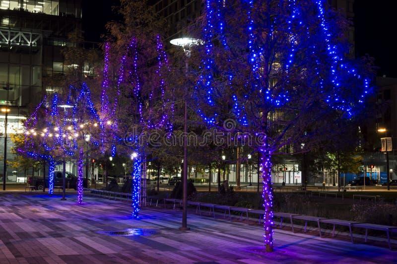 Lights along Seaport Boulevard stock photo