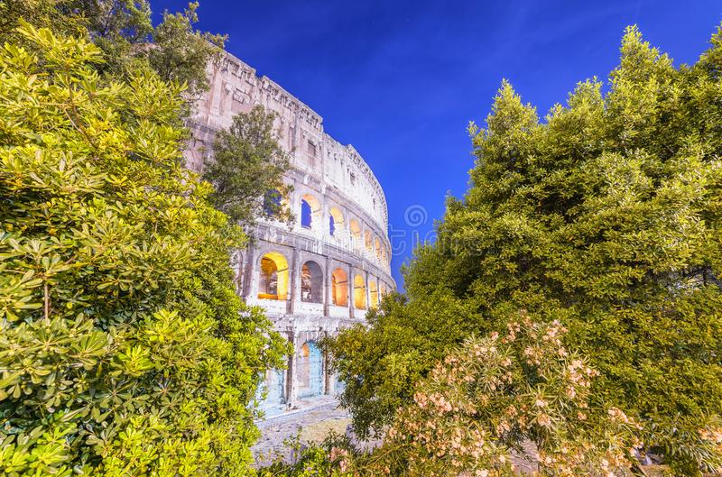 Lights of Colosseum framed by trees - Rome at night, Italy stock photos